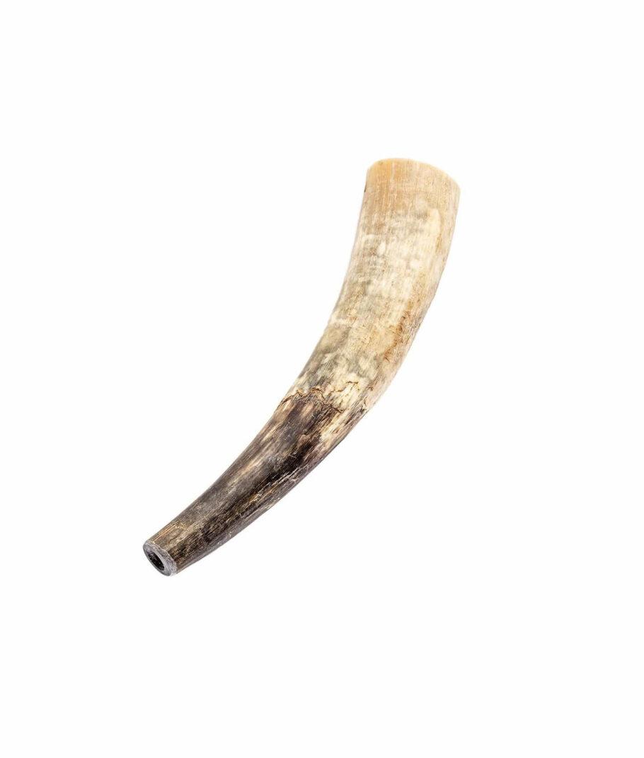 Ein Rufhorn ca. 28 cm lang aus echtem Kuhhorn in roh.